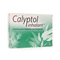 CALYPTOL INHALANT, émulsion pour inhalation par fumigation à Carbon-Blanc