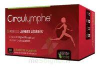 Santé Verte Circulymphe Triple Actions B/60 à Carbon-Blanc
