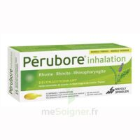 PERUBORE Caps inhalation par vapeur inhalation Plq/15 à Carbon-Blanc