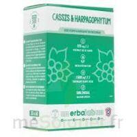 ERBALAB Cassis Harpago Sol subl 30ml à Carbon-Blanc