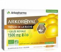 Arkoroyal Gelée royale bio 1500 mg Solution buvable 20 Ampoules/10ml à Carbon-Blanc