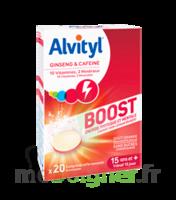 Alvityl Boost Comprimés B/20 à Carbon-Blanc